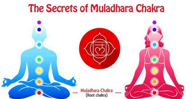 root chakra must knows